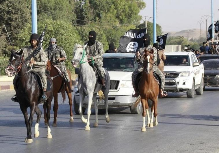 is mosul horses parade